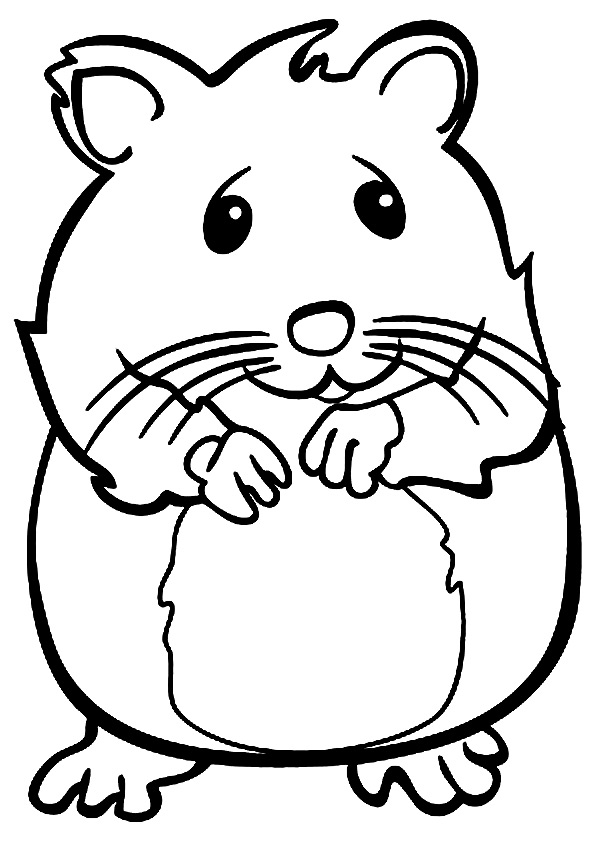 Coloriage Hamster Souriant